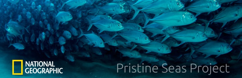 pristine-seas_0